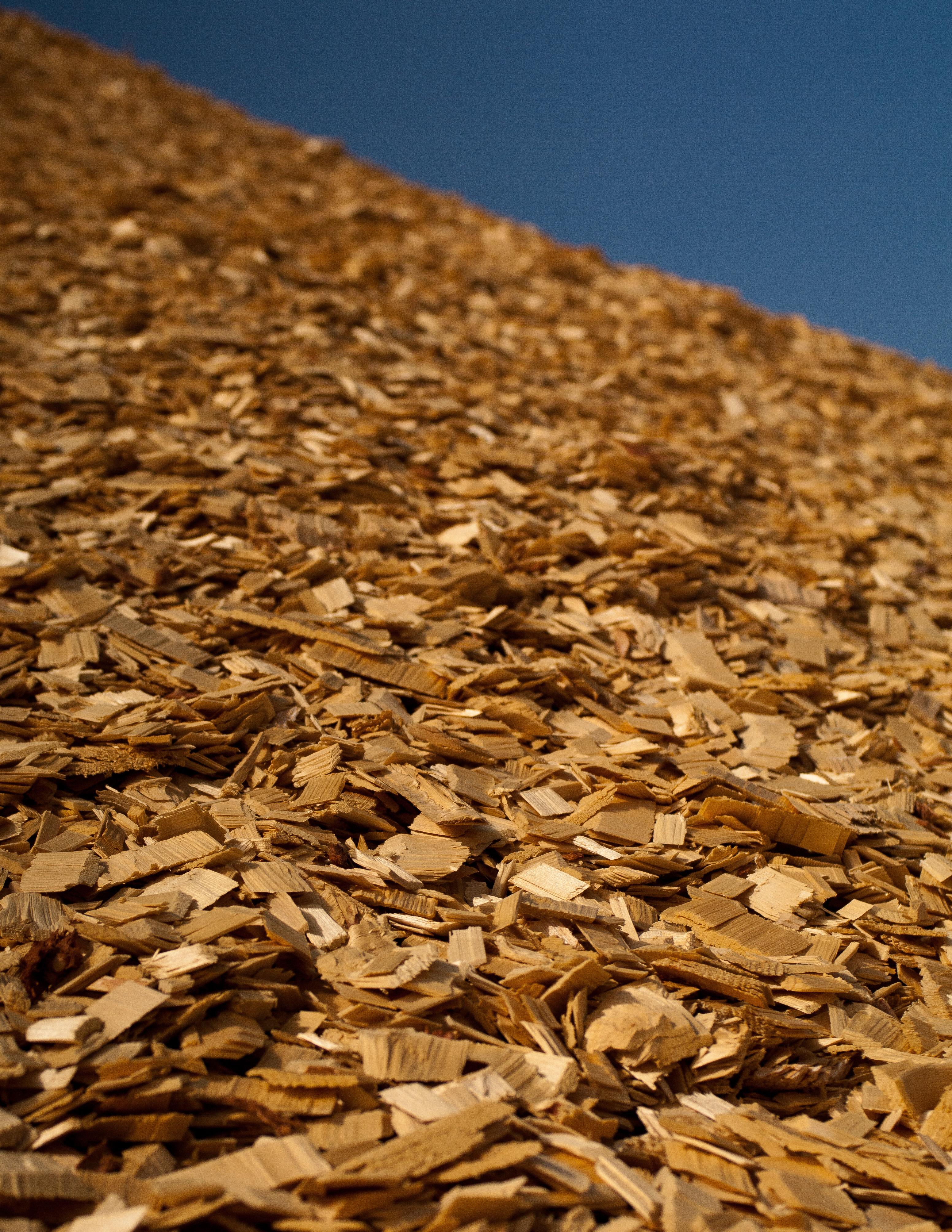 Cofired_Biomass