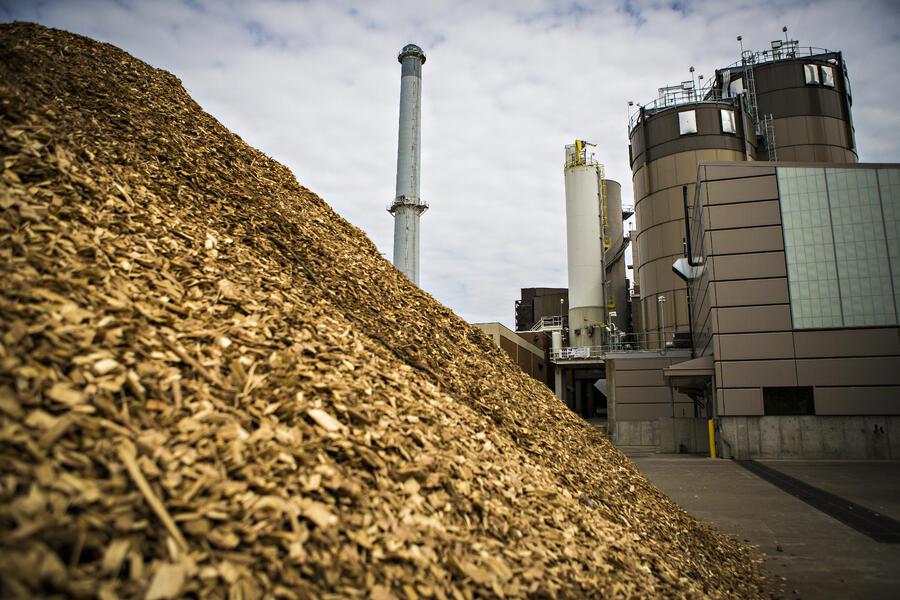 Advanced Energy Technology of the Week: Biomass Power