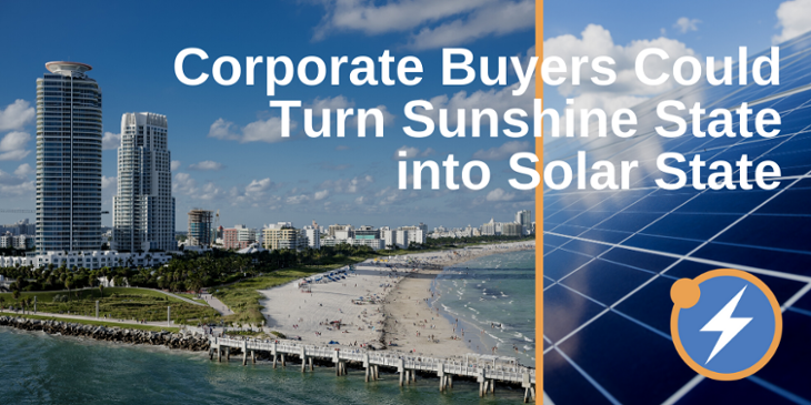 Florida Buyers solar-730