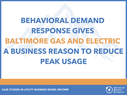 Case Studies in Utilitity Business Model - BGE-500