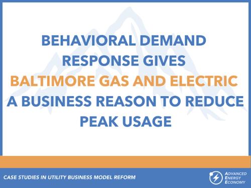 Case Studies in Utilitity Business Model - BGE-500