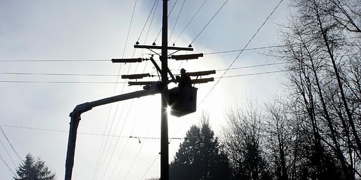 danna-§-curious-tangles-powerline-worker-ny-rev.jpg